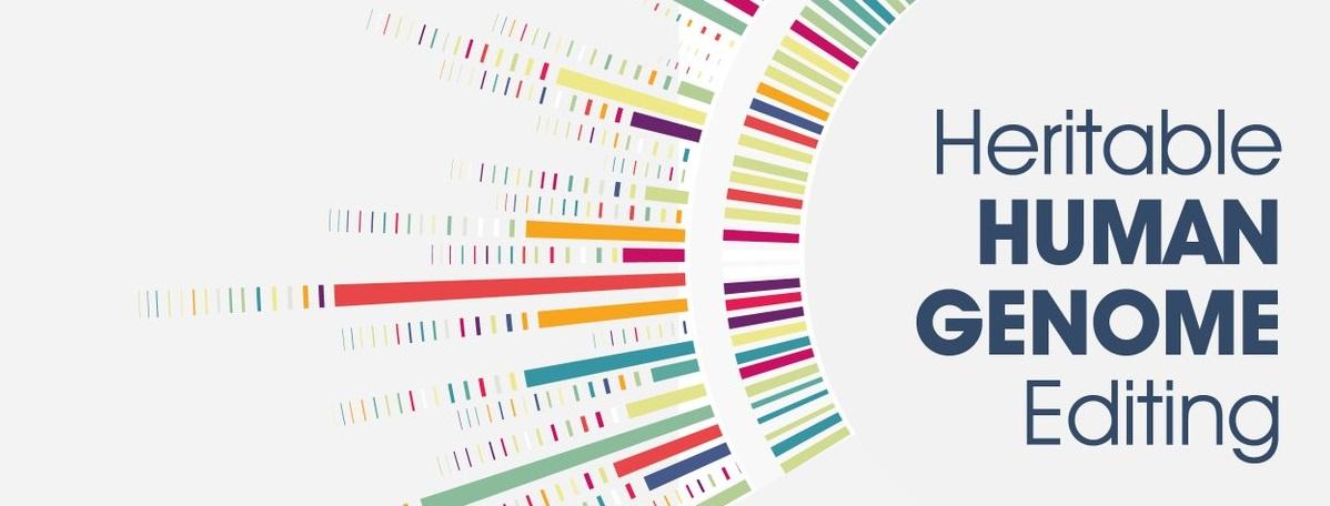 Heritable Human Genome Editing